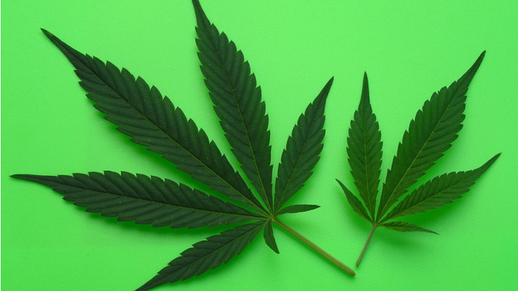 an argumentation of marijuana as medicine